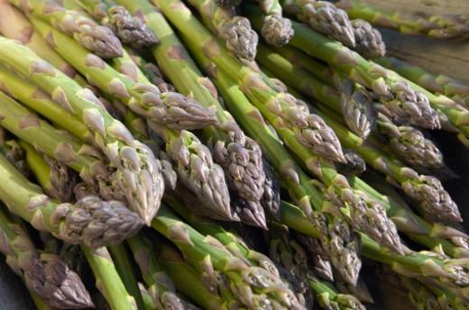 Asparagus. close-up : Stock Photo