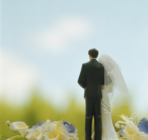 Bride and groom figurine, close-up, rear view : Stock Photo