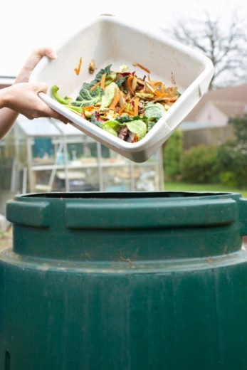Unrecognizable person pouring kitchen waste into compost bin, close-up of hands : Stock Photo