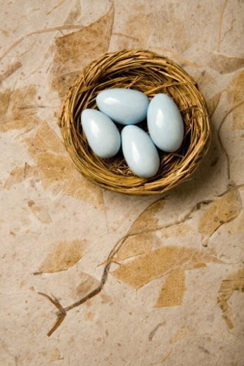 Stock Photo: 1527R-1164129 Four blue eggs in nest, close-up