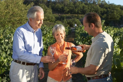 Stock Photo: 1527R-1176836 Mature couple and expert tasting wine in vineyard