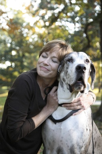 Mature woman embracing great dane in autumn park, eyes closed, smiling : Stock Photo