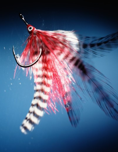 Fishing lure : Stock Photo