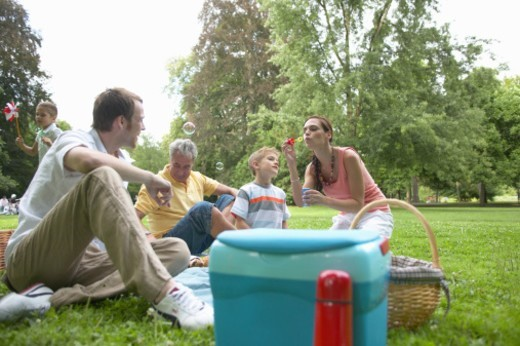 Stock Photo: 1527R-1199129 Multi-generational family having picnic in park, children (6-8)