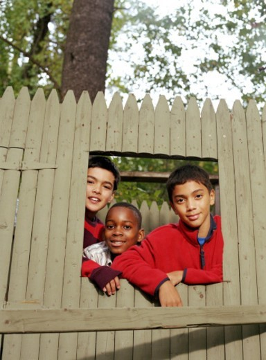 Three boys (10-12) looking through treehouse window, portrait : Stock Photo