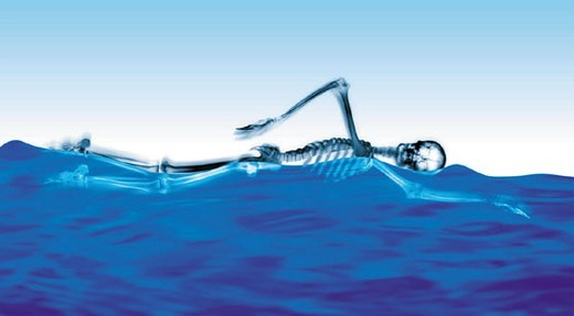 Swimming skeleton : Stock Photo