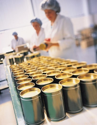 Factory workers putting labels on cans : Stock Photo
