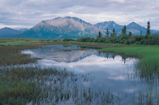 Denali Highway, Alaska, USA : Stock Photo