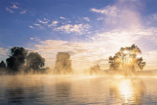Williams Pond ar dawn, Worthington Valley, Maryland, USA : Stock Photo