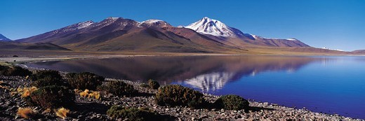 Laguna Miscanti, Atacama Desert, Chile : Stock Photo