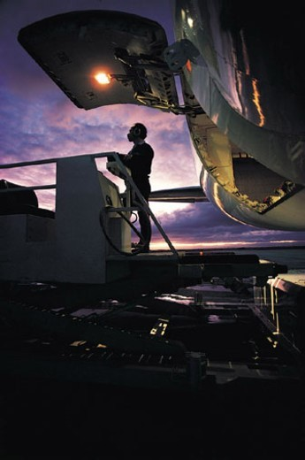 Worker Loading Cargo on Airplane : Stock Photo