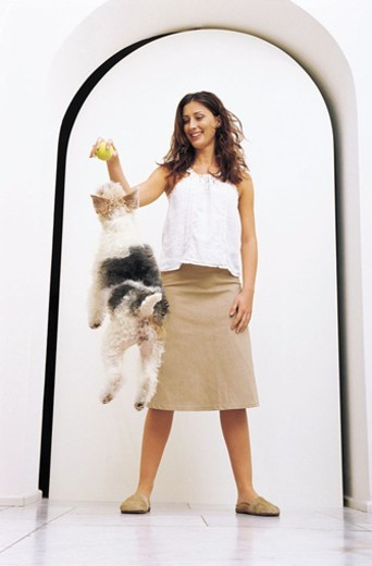 Stock Photo: 1527R-497061 Woman Teasing Her Fox Terrier With a Tennis Ball