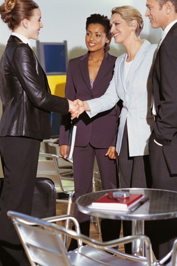 Stock Photo: 1527R-607032 Business Executives Greeting a Businesswoman Before an Interview