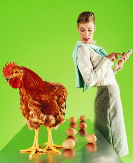 Stock Photo: 1527R-667006 Businesswoman Counting Eggs Laid by a Chicken