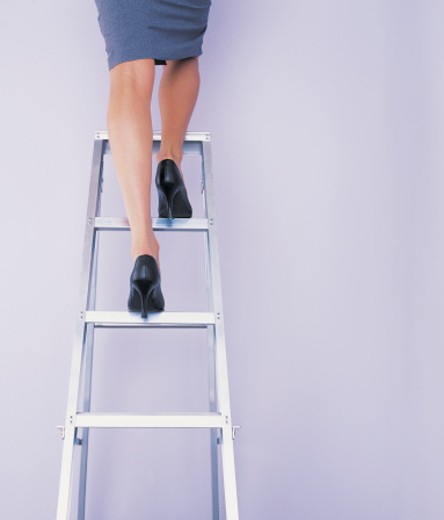 Stock Photo: 1527R-671059 Low Section View of a Businesswoman Standing on Top of a Stepladder