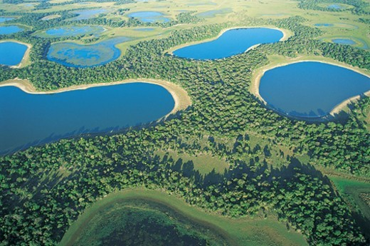 Stock Photo: 1527R-737022 The Pantanal Wetlands, Brazil