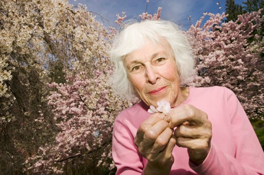 Stock Photo: 1530R-35534 Woman holding blossom from tree