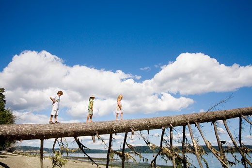 Stock Photo: 1530R-37014 Children balancing on fallen tree