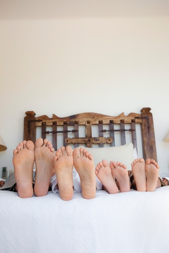 family lying on bed, feet lined up : Stock Photo