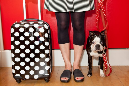 Stock Photo: 1530R-41623 Woman with polka dot suitcase and dog on leash