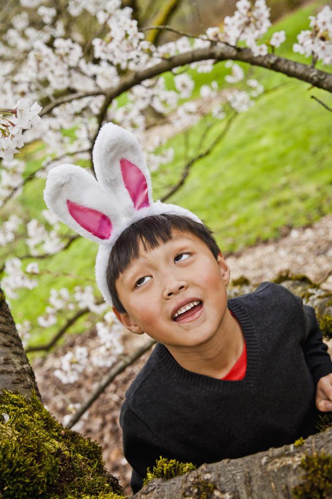 Stock Photo: 1530R-41654 Boy wearing bunny ears