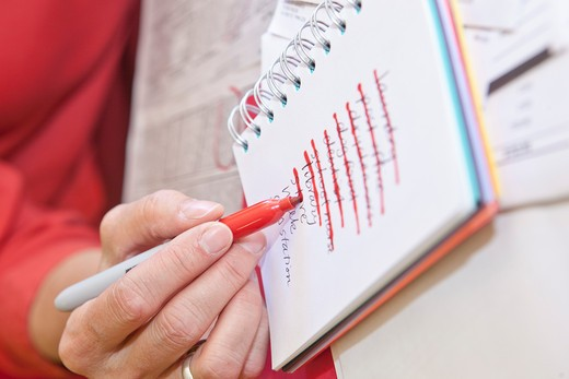 Stock Photo: 1530R-41698 Woman making list in small notebook,