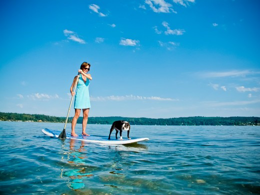 Stock Photo: 1530R-41795 Woman on paddle board with dog,