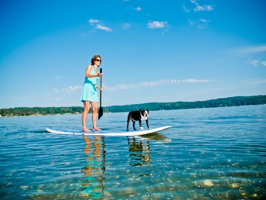 Stock Photo: 1530R-41797 Woman on paddle board with dog,