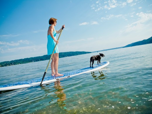 Woman on paddle board with dog, : Stock Photo
