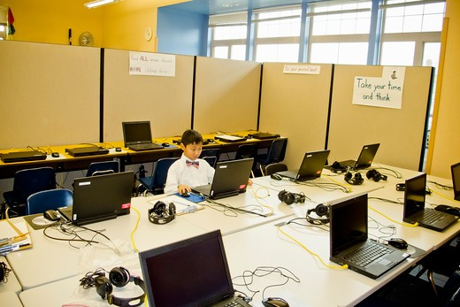 Stock Photo: 1530R-41858 Young boy seated at school laptop in computer lab,