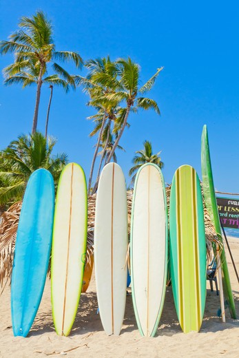 Row of surf boards on beach in Mexico,  Sayulita, Mexico : Stock Photo
