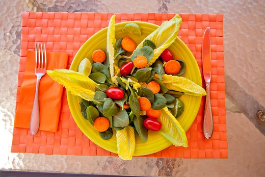 Stock Photo: 1530R-42045 Endive watercress and tomato salad on colorful mat