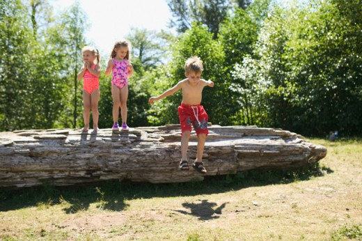 Stock Photo: 1530R-6048 Three young children playing on a fallen log.