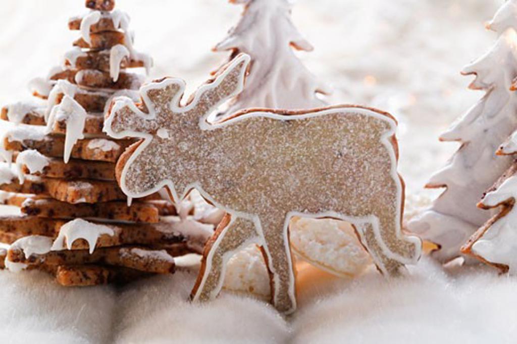Chocolate elk biscuit in winter forest : Stock Photo