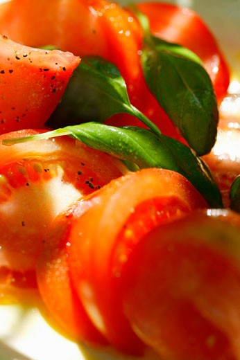 Stock Photo: 1532R-11500 Tomatoes with fresh basil
