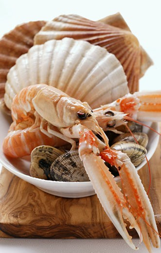 Scampi and shellfish in white dish : Stock Photo