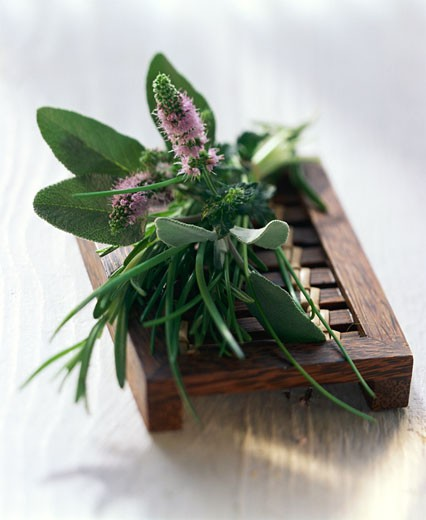 Stock Photo: 1532R-16832 Still life with mixed herbs on a wooden bench