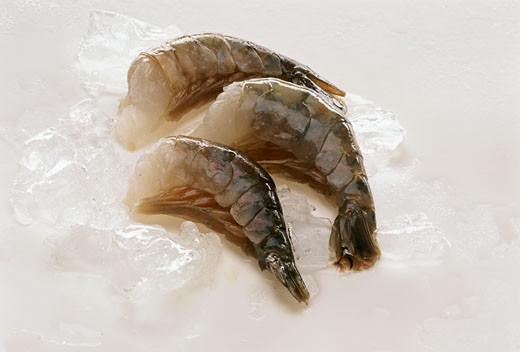 Fresh king prawns without heads on ice cubes : Stock Photo