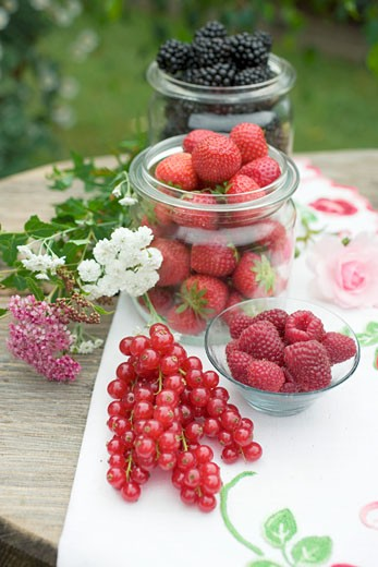 Fresh berries on rustic table out of doors : Stock Photo