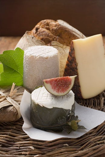 Cheese still life with bread and fig : Stock Photo