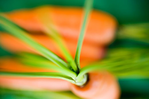 Fresh carrots on green background : Stock Photo