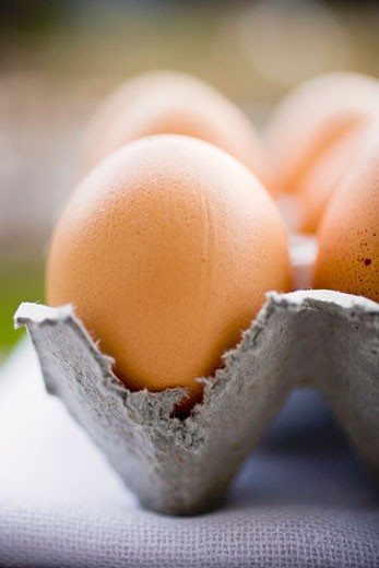 Stock Photo: 1532R-28547 Brown eggs in an egg box