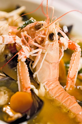 Two Norway lobsters in vegetable stock : Stock Photo