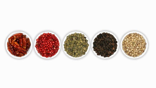 Four different types of peppercorns and dried chillies : Stock Photo