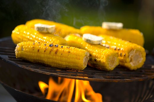 Corn on the cob with herb butter on barbecue : Stock Photo