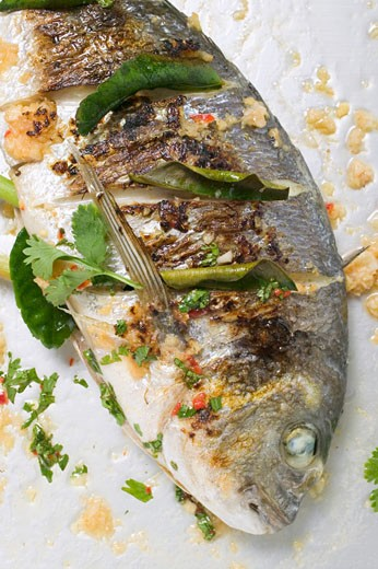 Roasted gilthead bream with lemon leaves : Stock Photo