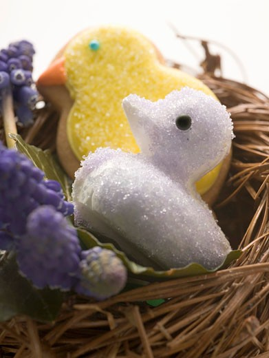 Easter sweets (chicks) in nest : Stock Photo