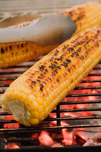 Stock Photo: 1532R-34545 Corn on the cob on a barbecue with barbecue tongs