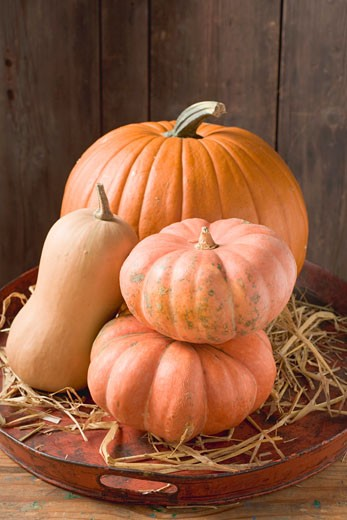Pumpkins and squashes on old tray in front of wooden wall : Stock Photo