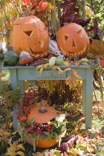 Autumnal garden decoration with pumpkins : Stock Photo